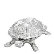 Box Tortoise S