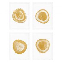 Prints Gold Foil: Tree Rings set of 4