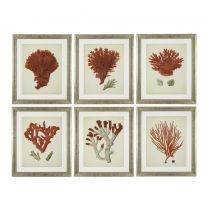 Prints Antique red corals set of 6