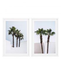 Prints Palm Trees set of 2