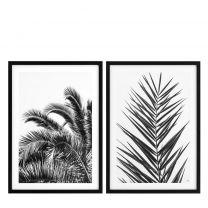 Prints Palm Leaves set of 2
