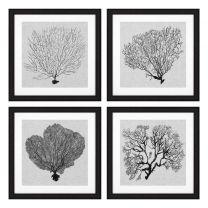 Prints Shadow Sea Fans set of 4